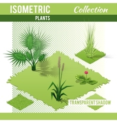 Isometric plants collection vector image