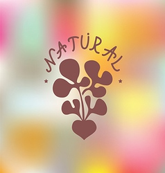 Natural food Embleme vector image vector image