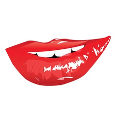 Sensual red lips vector
