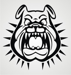 Angry bulldog face vector