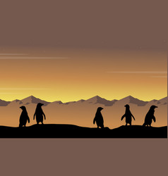 Landscape of penguin at sunset silhouettes vector
