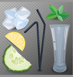 Refreshing drink ingredients vector