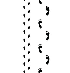 trail of feet seamless vector image