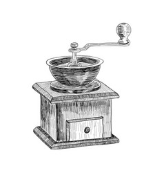 Coffee grinder freehand pencil drawing isolated on vector