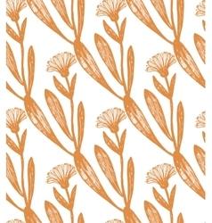 hand drawn calendula background vector image