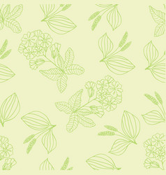 herbal pattern 1 vector image vector image