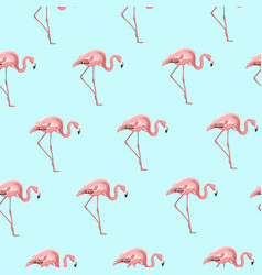 exotic pink flamingo bird on blue seamless pattern vector image