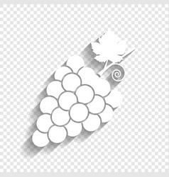Grapes sign white icon with vector