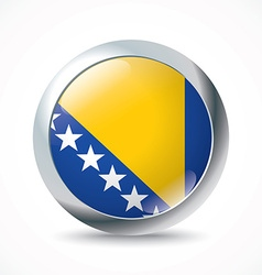 Bosnia and herzegovina flag button vector