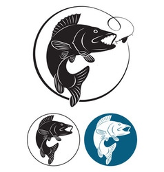 Trout fishing icon vector