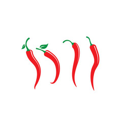 hot chili icon vector image vector image