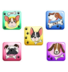 Dog on square badges vector