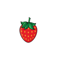 Flat sketch style red fresh ripe strawberry vector