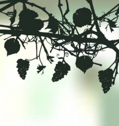 Bunch of grapes plant background vector