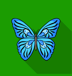 Butterfly icon in flat style isolated on white vector