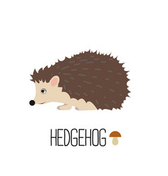 cute hedgehog isolated vector image vector image