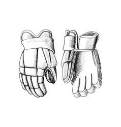 Hockey gloves vector image