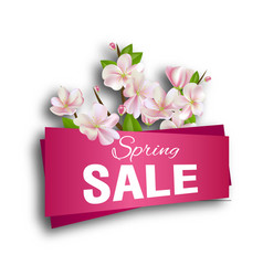 spring sale season discount banner design with vector image vector image
