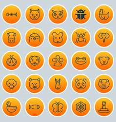 Zoology icons set collection of kitten trunked vector
