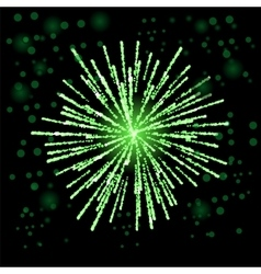 Green firework lights vector