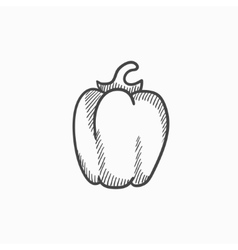 Bell pepper sketch icon vector image