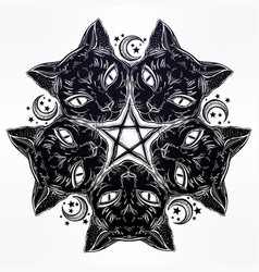 black cat head portrait madnala moon pentagram vector image vector image