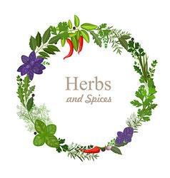 wreath of herbs and spices on a white background vector image vector image