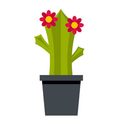Cactus with flowers icon isolated vector