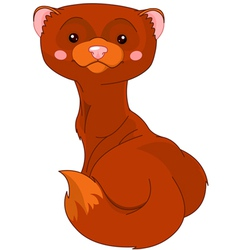 Fun zoo mink vector