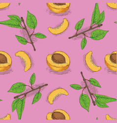 seamless pattern with ripe apricot vector image