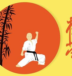 A boy engaged in karate on a red background vector