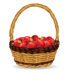 Basket of red apples2 vector