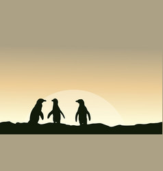 At sunrise scenery with penguin silhouettes vector