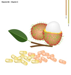 Rambutans with vitamin b3 and vitamin c vector