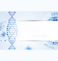 science template dna molecules background vector image vector image