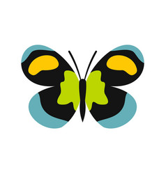 Unusual butterfly icon flat style vector