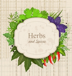 Vintage card with herbs and spices on canva vector image