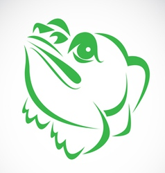 Image of an frog vector