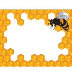 bees and honeycomb with honey vector image vector image