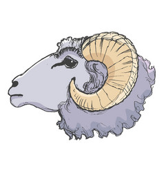 Ram farm animal vector