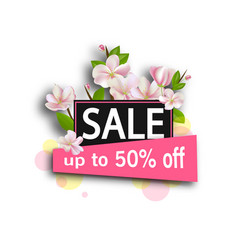 sale background with flowers season discount vector image vector image