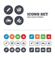 Agricultural icons wheat corn or gluten free vector