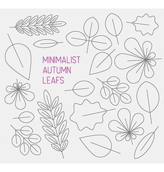 Autumn minimalistic abstract floral background vector image vector image