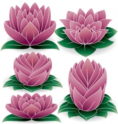 lotus set vector image vector image