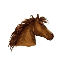 Artistic brown horse head sketch portrait vector image