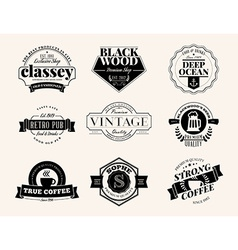Set of retro vintage badges and logotypes design vector