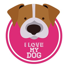 Love pet design vector
