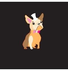 Dog bulldog vector