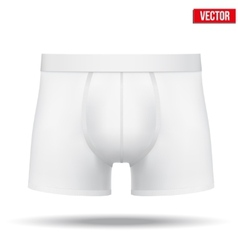 Male white underpants brief isolated on background vector