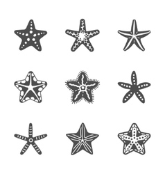 Shape set of various sea starfish vector